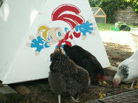 hatcher-coop